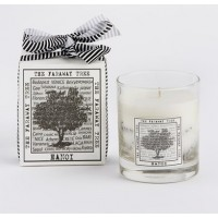The White Window Clear Container With Scented Softwax - Hanoi Candle