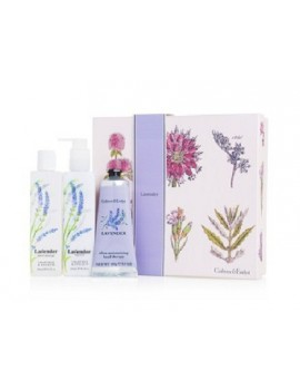 Crabtree & Evelyn Lavender Duo- 1 Set
