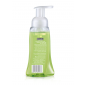 Buy Palmolive Foaming Lime & Mint Hand Wash - Nykaa