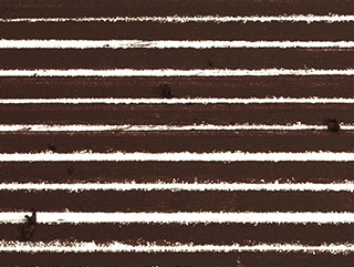 Long Espresso - Espresso Brown