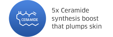 5x Ceramide synthesis boost that plumps skin