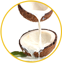 Coconut Milk Extract