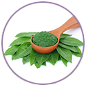 Henna Extract for hair