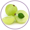 Amla Extract for hair