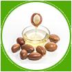 Moroccan Argan Oil for healthy hair