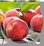 WOW Skin Science Kids Peach 3 in 1 Tip to Toe Wash - Shampoo + Conditioner + Bodywash has Refreshing Peach