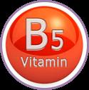 Vitamins-B5 for Aloe Vera Daily Body Lotion