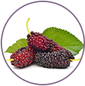 Mulberry and liquorice extract